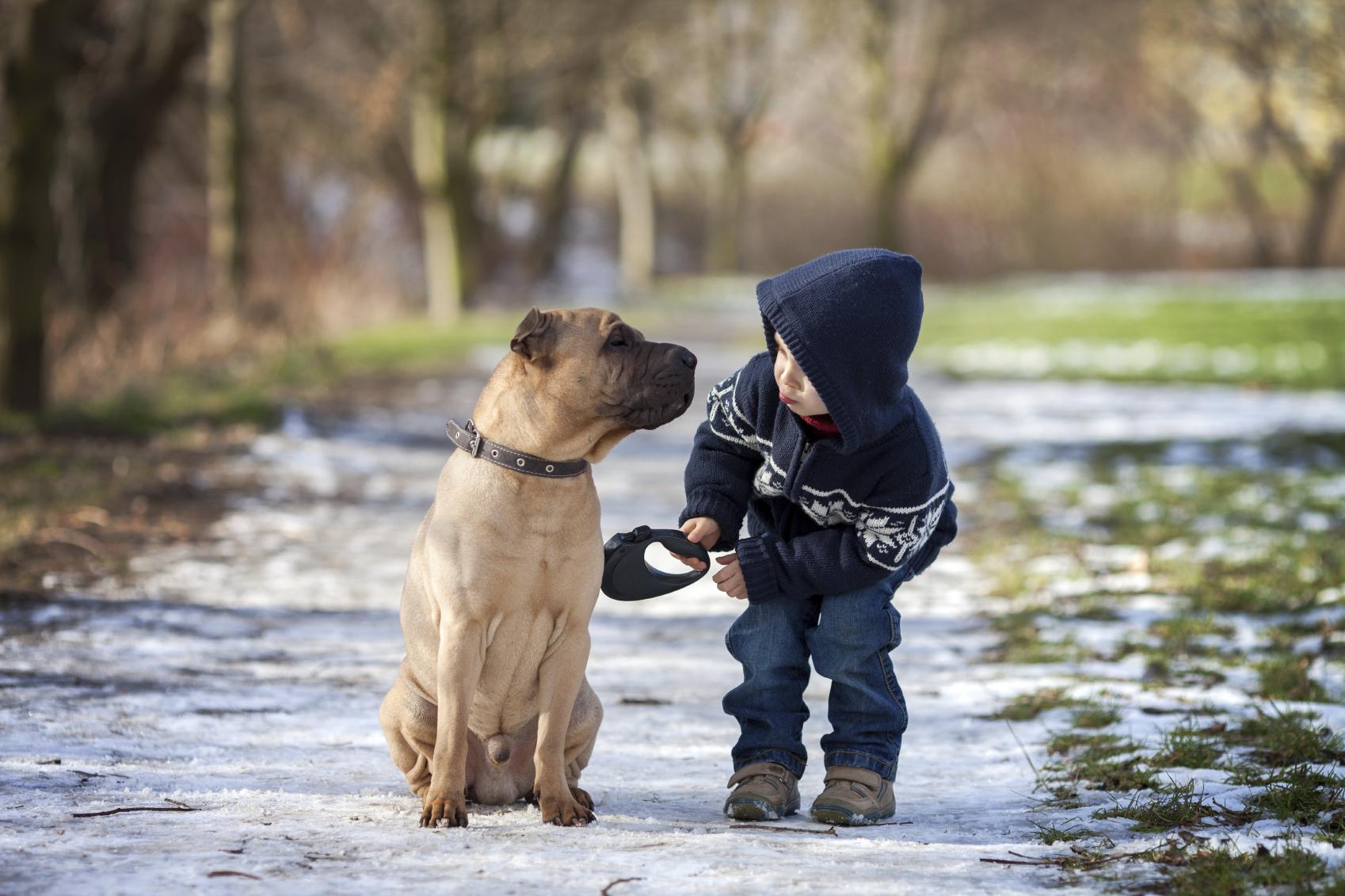 Hondentraining met en voor kinderen